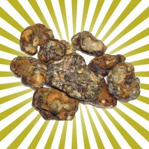 psilocybe-atlantis-magic-truffels-300x300.jpg
